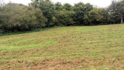 Vente terrain constructible Saint-Aubin-des-Coudrais (Sarthe)