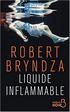 Robert Bryndza - Liquide inflammable